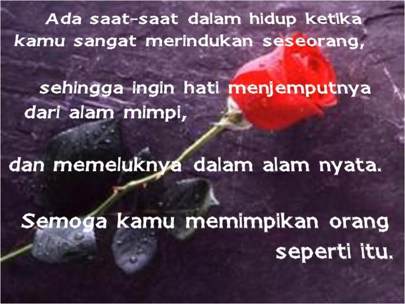 Contoh Dari Puisi Cinta Sejati Terbaru