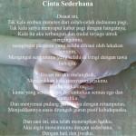 Contoh Puisi Cinta Galau Yang Indah