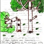 Contoh Puisi Lingkungan Hidup Yang Indah